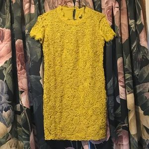 Zara - NWT Chartreuse Lace Dress